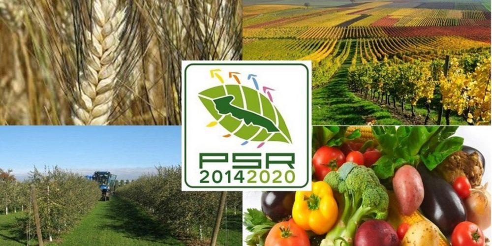 Bando Misura 6.1 – Aiuti all'avviamento di imprese per giovani agricoltori
